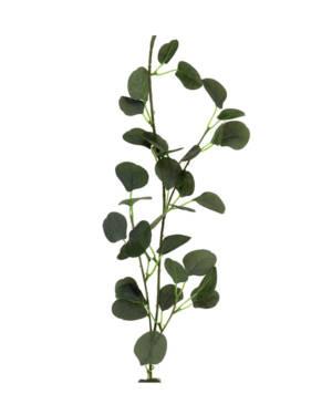 Grønn eukalyptus girlander